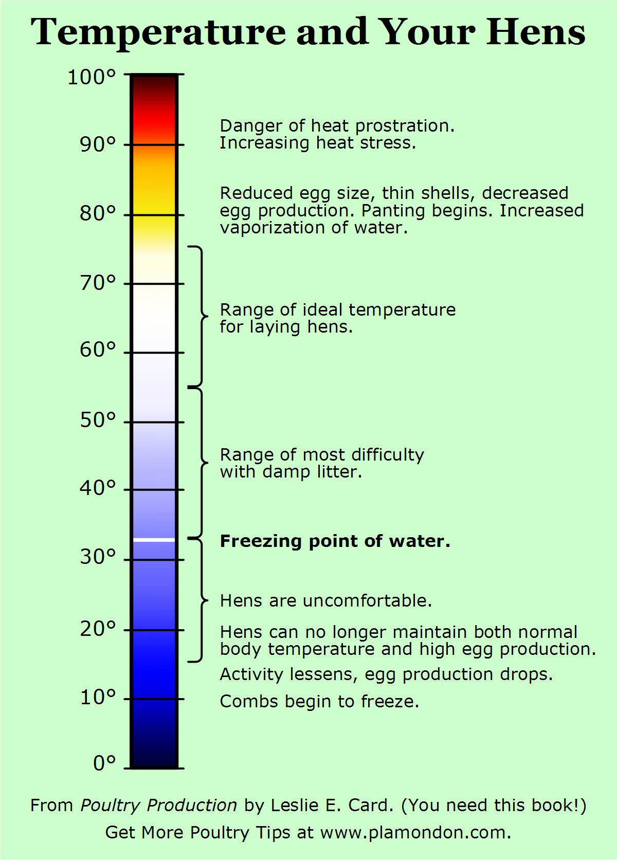 Temperature and Your Hens, from Poultry Production by Leslie E Card, published by Norton Creek Press.